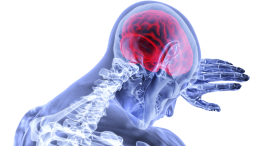 vaccines brain damage